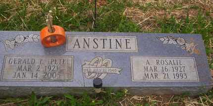 ANSTINE, ROSALIE - Howell County, Missouri | ROSALIE ANSTINE - Missouri Gravestone Photos