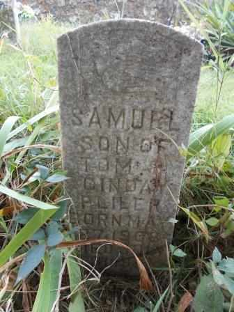 PLILER, SAMUEL - Howell County, Missouri | SAMUEL PLILER - Missouri Gravestone Photos