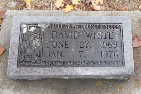 WHITE, DAVID - Howell County, Missouri | DAVID WHITE - Missouri Gravestone Photos