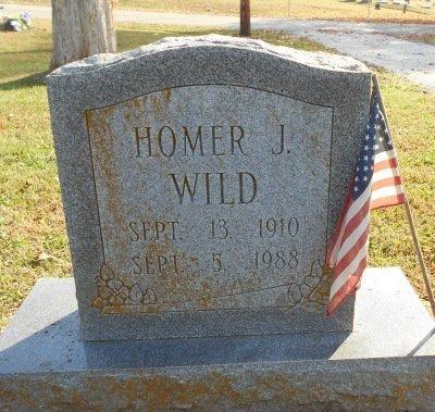 WILD, HOMER J. - Howell County, Missouri | HOMER J. WILD - Missouri Gravestone Photos