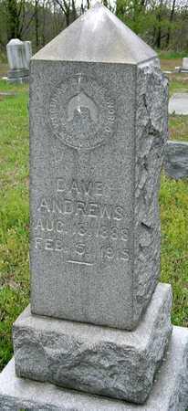 ANDREWS, DAVE JR - Jasper County, Missouri | DAVE JR ANDREWS - Missouri Gravestone Photos