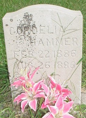 HAMMER, CORDELIA - Jasper County, Missouri   CORDELIA HAMMER - Missouri Gravestone Photos