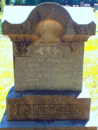 ANDERSON, ANDREW GUSTAF - Lawrence County, Missouri | ANDREW GUSTAF ANDERSON - Missouri Gravestone Photos
