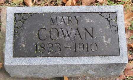 COWAN, MARY - McDonald County, Missouri | MARY COWAN - Missouri Gravestone Photos