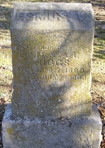 HIGGS, ESMUS V. - McDonald County, Missouri | ESMUS V. HIGGS - Missouri Gravestone Photos