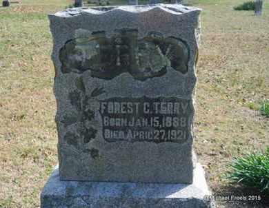TERRY, FOREST C. - McDonald County, Missouri | FOREST C. TERRY - Missouri Gravestone Photos