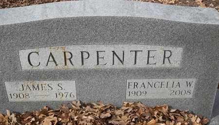 CARPENTER, JAMES S - Morgan County, Missouri | JAMES S CARPENTER - Missouri Gravestone Photos