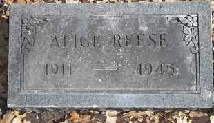 REESE, ALICE - Morgan County, Missouri | ALICE REESE - Missouri Gravestone Photos