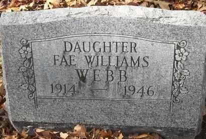WILLIAMS WEBB, FAE - Morgan County, Missouri | FAE WILLIAMS WEBB - Missouri Gravestone Photos
