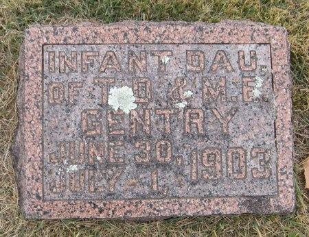 GENTRY, INFANT DAUGHTER - Newton County, Missouri | INFANT DAUGHTER GENTRY - Missouri Gravestone Photos