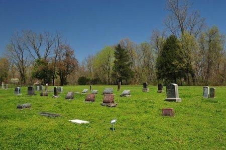 REGAN CEMETERY, * - Newton County, Missouri | * REGAN CEMETERY - Missouri Gravestone Photos