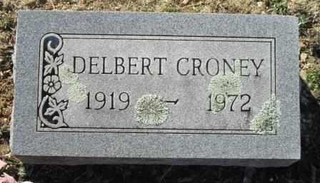 CRONEY, DELBERT - Ozark County, Missouri | DELBERT CRONEY - Missouri Gravestone Photos