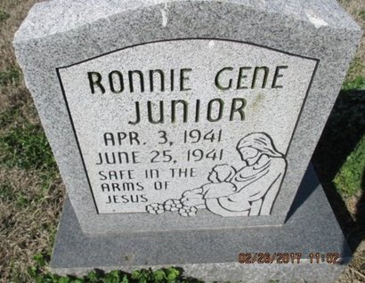 JUNIOR, RONNIE GENE - Pemiscot County, Missouri | RONNIE GENE JUNIOR - Missouri Gravestone Photos