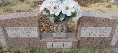 LEE, RAYMOND EMMIT - Pemiscot County, Missouri | RAYMOND EMMIT LEE - Missouri Gravestone Photos