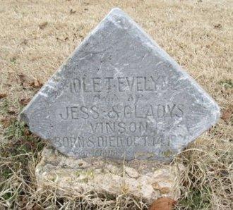 VINSON, VIOLET EVELYN - Pemiscot County, Missouri   VIOLET EVELYN VINSON - Missouri Gravestone Photos