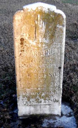 ANDERSON, CAROLINE - Pike County, Missouri | CAROLINE ANDERSON - Missouri Gravestone Photos