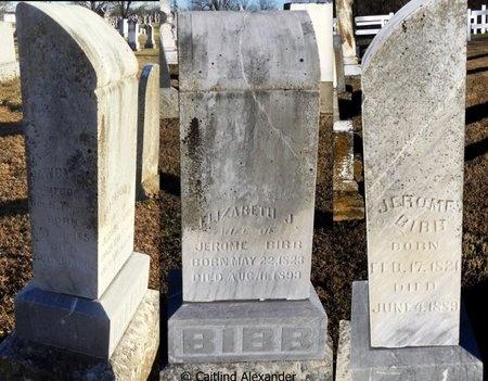 MCCUTCHIN BIBB, ELIZABETH - Pike County, Missouri | ELIZABETH MCCUTCHIN BIBB - Missouri Gravestone Photos
