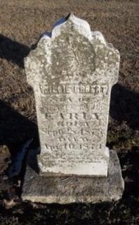 EARLY, WILLIE ROBERT - Pike County, Missouri | WILLIE ROBERT EARLY - Missouri Gravestone Photos