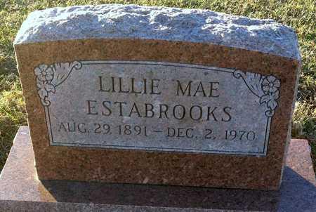 ESTABROOKS, LILLIE MAE - Pike County, Missouri | LILLIE MAE ESTABROOKS - Missouri Gravestone Photos