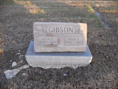 STROTHERS GIBSON, LUCY C - Pike County, Missouri | LUCY C STROTHERS GIBSON - Missouri Gravestone Photos