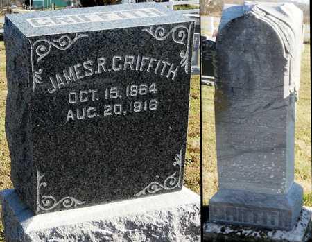 GRIFFITH, LEONA - Pike County, Missouri   LEONA GRIFFITH - Missouri Gravestone Photos
