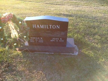 HAMILTON, HAROLD W - Pike County, Missouri | HAROLD W HAMILTON - Missouri Gravestone Photos