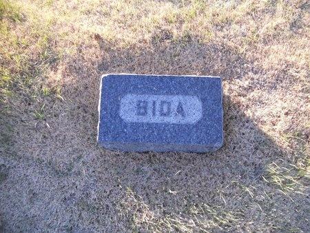 PITT HENRY, BIDA - Pike County, Missouri | BIDA PITT HENRY - Missouri Gravestone Photos