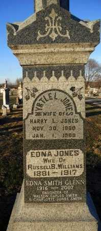 JONES WILLIAMS, EDNA - Pike County, Missouri | EDNA JONES WILLIAMS - Missouri Gravestone Photos