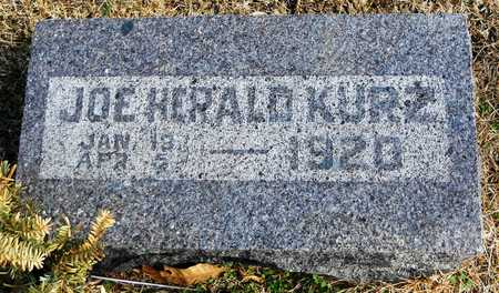 KURZ, JOE HERALD - Pike County, Missouri | JOE HERALD KURZ - Missouri Gravestone Photos