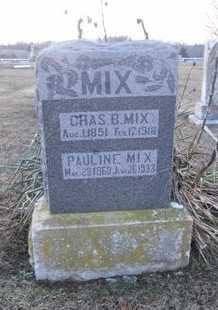 MIX, PAULINE - Pike County, Missouri | PAULINE MIX - Missouri Gravestone Photos