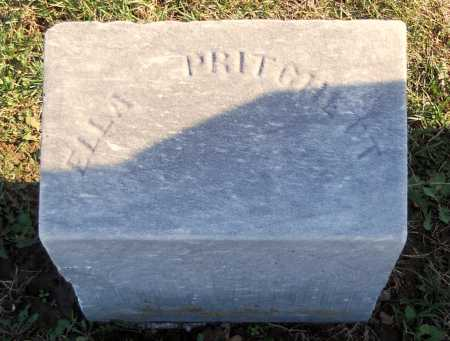 PRITCHETT, EMILY ELLA - Pike County, Missouri | EMILY ELLA PRITCHETT - Missouri Gravestone Photos