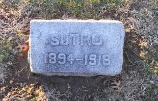 PRITCHETT, SUTRO CAVERLY - Pike County, Missouri | SUTRO CAVERLY PRITCHETT - Missouri Gravestone Photos