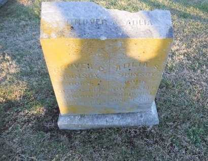 SPINSBY, ADLIA S - Pike County, Missouri | ADLIA S SPINSBY - Missouri Gravestone Photos