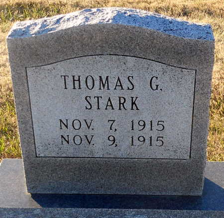 STARK, THOMAS G - Pike County, Missouri | THOMAS G STARK - Missouri Gravestone Photos