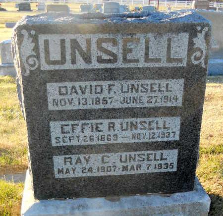 UNSELL, DAVID F - Pike County, Missouri | DAVID F UNSELL - Missouri Gravestone Photos