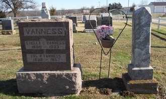 VANNESS, IRL ROMNEY - Pike County, Missouri | IRL ROMNEY VANNESS - Missouri Gravestone Photos