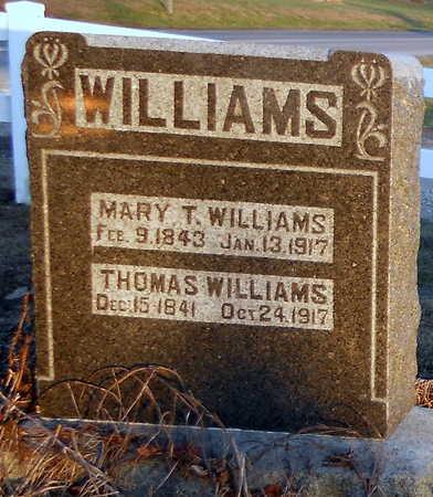 WILLIAMS, MARY T - Pike County, Missouri | MARY T WILLIAMS - Missouri Gravestone Photos