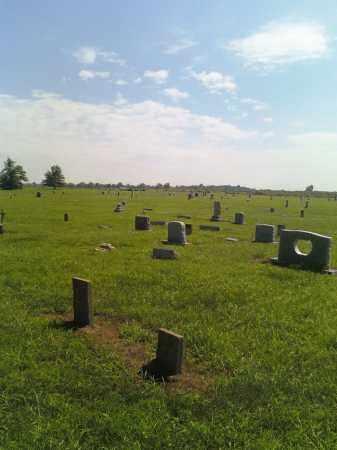 *CARPENTER CEMETERY, OVERVIEW - Scott County, Missouri | OVERVIEW *CARPENTER CEMETERY - Missouri Gravestone Photos