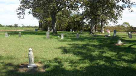 *POLLARD CEMETERY, OVERVIEW - Scott County, Missouri | OVERVIEW *POLLARD CEMETERY - Missouri Gravestone Photos