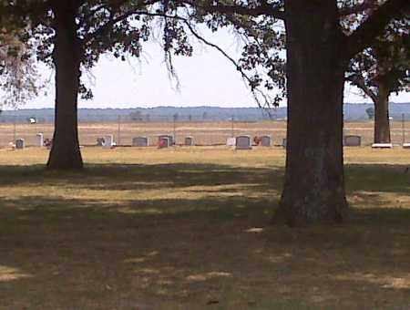 *WARFIELD CEMETERY, OVERVIEW - Scott County, Missouri | OVERVIEW *WARFIELD CEMETERY - Missouri Gravestone Photos