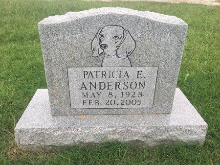 ANDERSON, PATRICIA EARLENE - Stone County, Missouri | PATRICIA EARLENE ANDERSON - Missouri Gravestone Photos