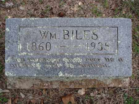 BILES, WILLIAM - Stone County, Missouri | WILLIAM BILES - Missouri Gravestone Photos