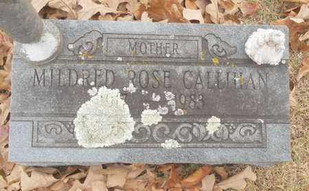 CALLIHAN, MILDRED ROSE - Texas County, Missouri | MILDRED ROSE CALLIHAN - Missouri Gravestone Photos