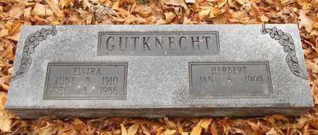 GUTKNECHT, ELVIRA - Texas County, Missouri | ELVIRA GUTKNECHT - Missouri Gravestone Photos