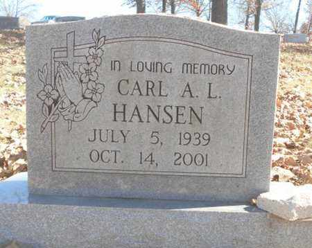 HANSEN, CARL A. L. - Texas County, Missouri | CARL A. L. HANSEN - Missouri Gravestone Photos