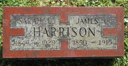 HARRISON, JAMES L. - Texas County, Missouri | JAMES L. HARRISON - Missouri Gravestone Photos
