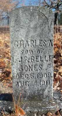 JONES, CHARLES ALTON - Texas County, Missouri | CHARLES ALTON JONES - Missouri Gravestone Photos