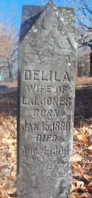 JONES, DELILA - Texas County, Missouri | DELILA JONES - Missouri Gravestone Photos