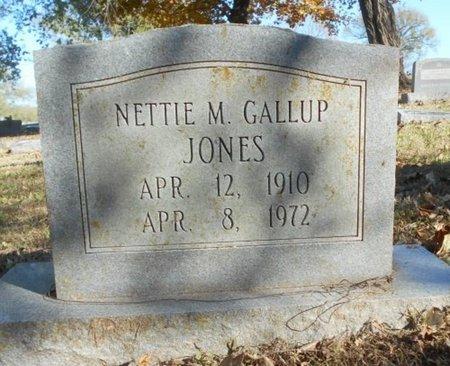 JONES, NETTIE M. - Texas County, Missouri | NETTIE M. JONES - Missouri Gravestone Photos