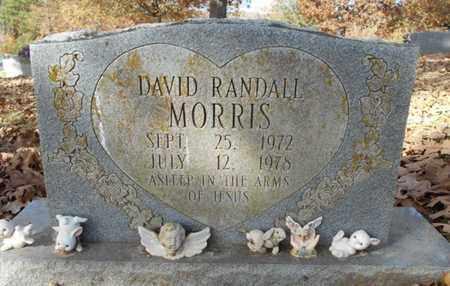 MORRIS, DAVID RANDALL - Texas County, Missouri | DAVID RANDALL MORRIS - Missouri Gravestone Photos